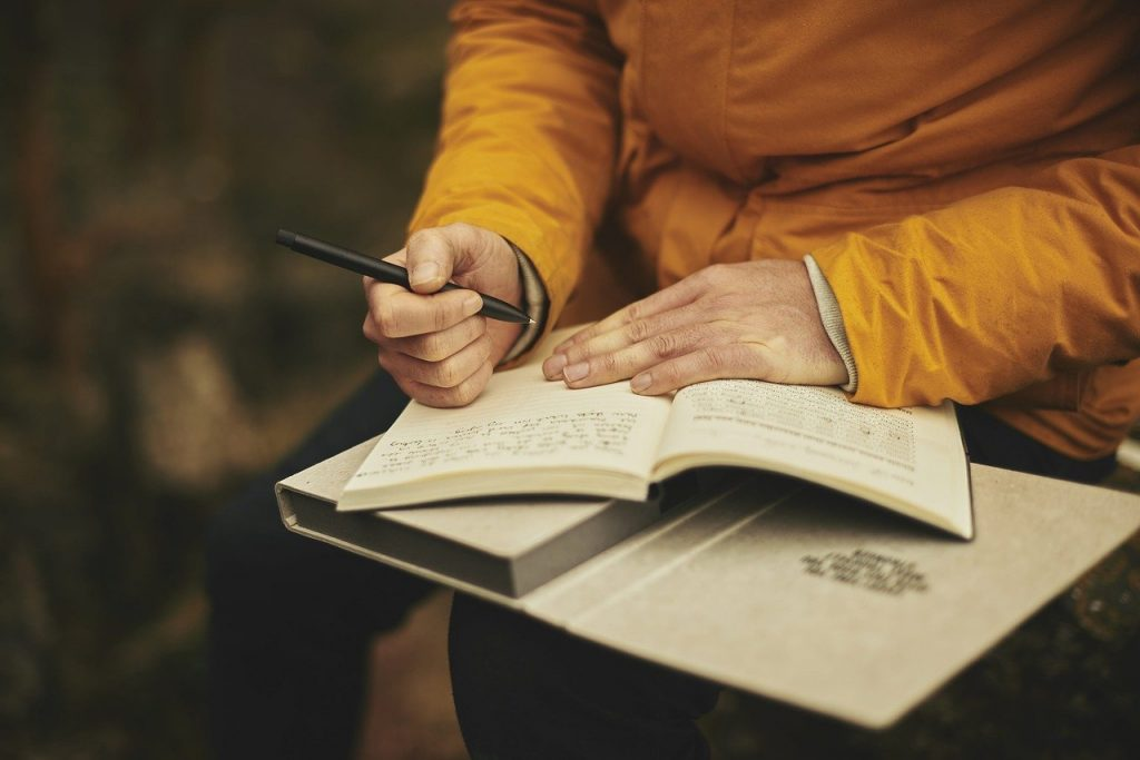 adult, diary, journal-1850177.jpg